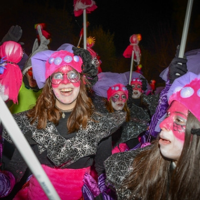 """CARNAVAL735 • <a style=""""font-size:0.8em;"""" href=""""http://www.flickr.com/photos/148612264@N07/38429784270/"""" target=""""_blank"""">View on Flickr</a>"""
